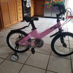 Nice C BMX Kids Bike with Dual Disc Brake, Training Wheels (Pink) photo review