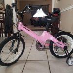 "Nice C BMX Kids Bike with Dual Disc Brake, Training Wheels 12""-18"" (Black) photo review"